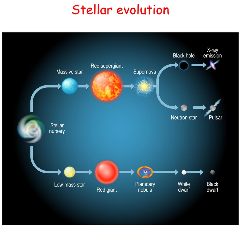 Stellar,Evolution.,Life,Cycle,Of,A,Star.,From,Stellar,Nursery