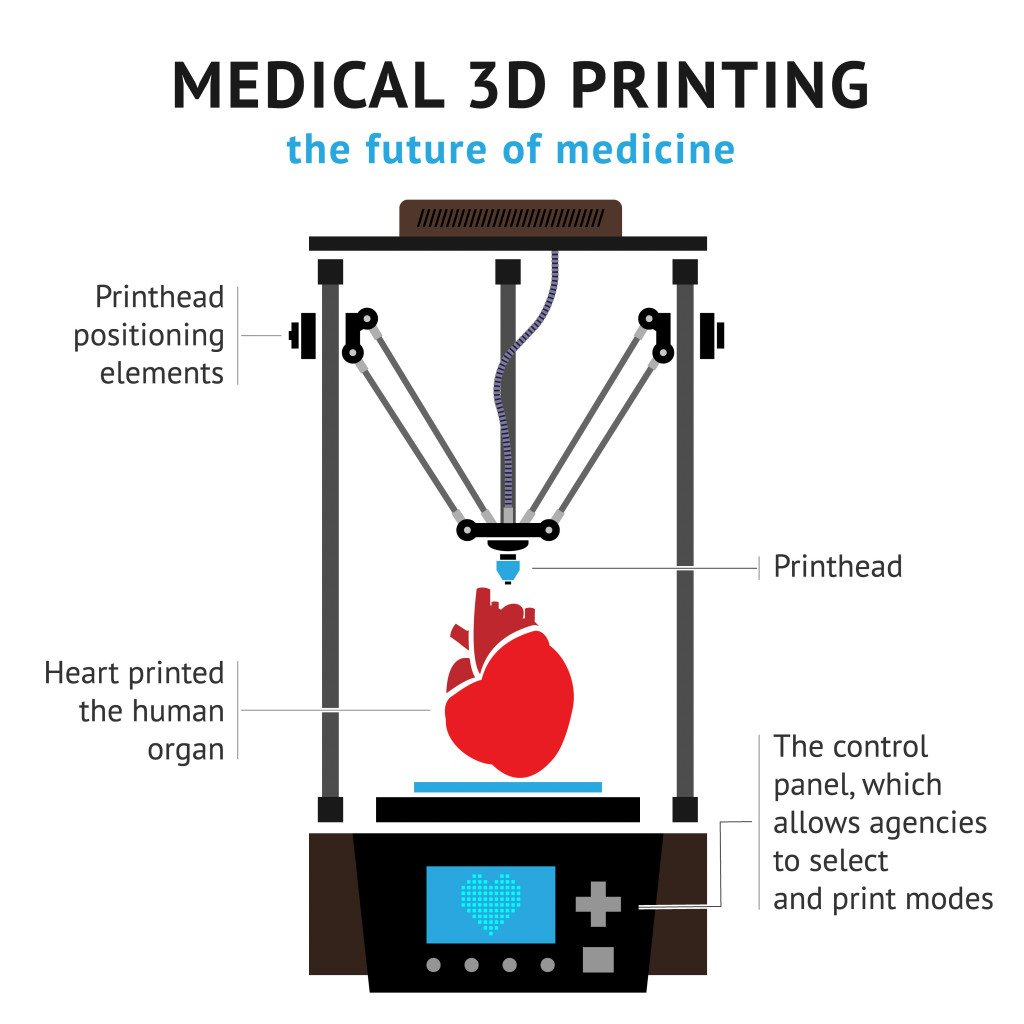 Medical 3d printer for duplication of human organs(TatyanaTVK)s