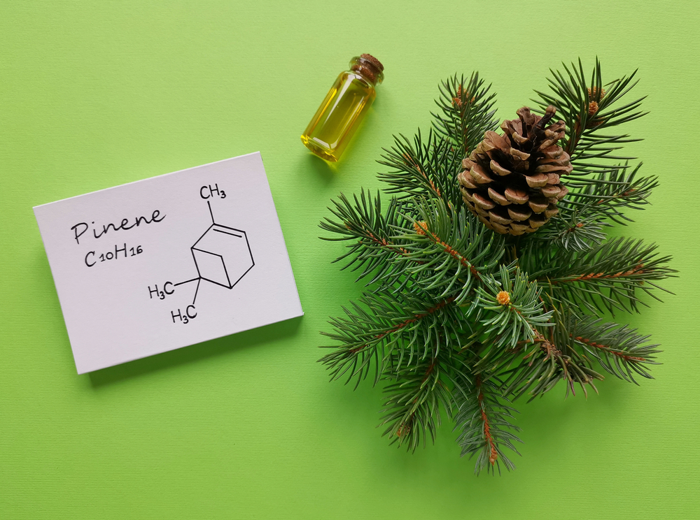 Structural,Chemical,Formula,Of,Pinene,Molecule,With,Pine,Cone,,Aromatherapy