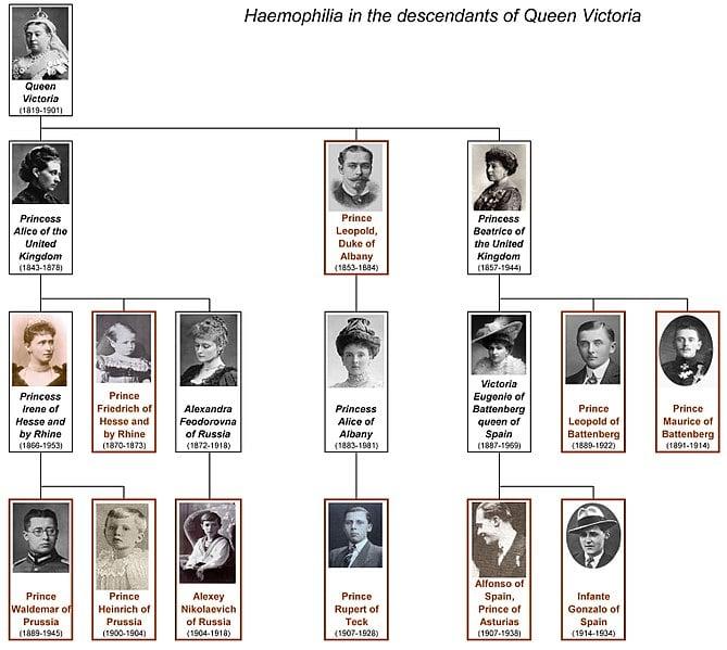 Haemophilia of Queen Victoria