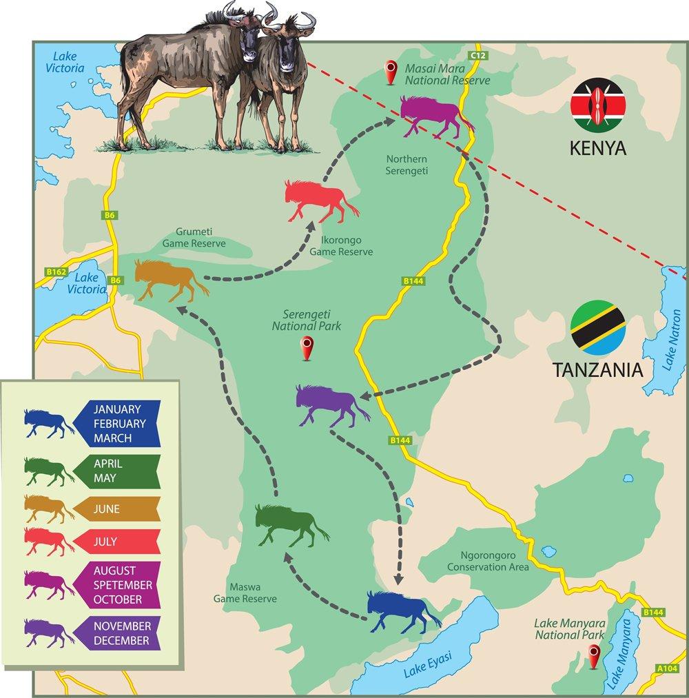 wildebeest migration shown on the map(EreborMountain)s