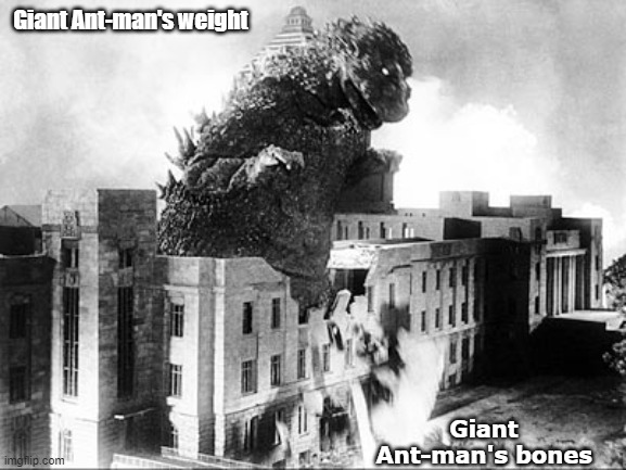 Giant Ant-man's weight meme
