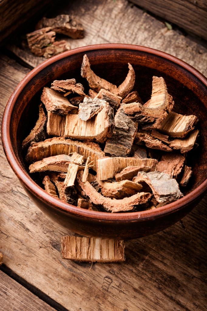 dry-oak-bark