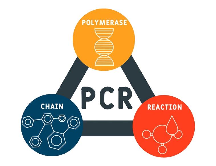 PCR - Polymerase Chain Reaction acronym