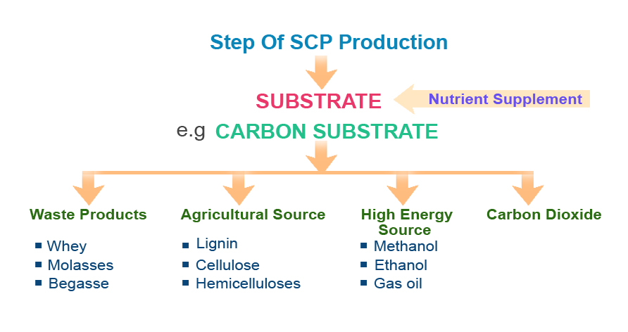 The main types of substrates used for SCP production are wastes, agricultural products as well as petroleum by-products.