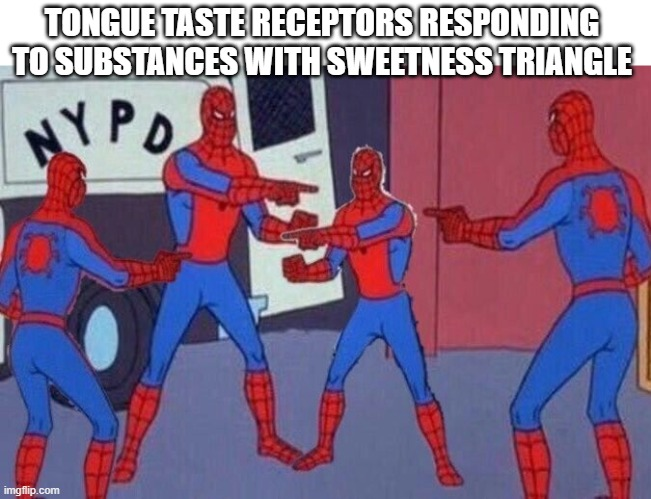 TONGUE TASTE RECEPTORS RESPONDING TO SUBSTANCES WITH SWEETNESS TRIANGLE