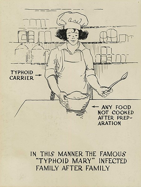 Typhoid carrier polluting food