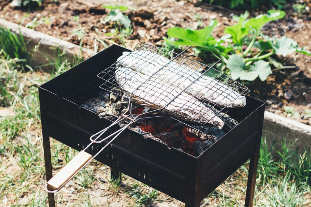 fish-in-foil-on-the-grill_t20_e8V4kK