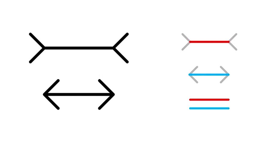 Muller-Lyer optical illusion